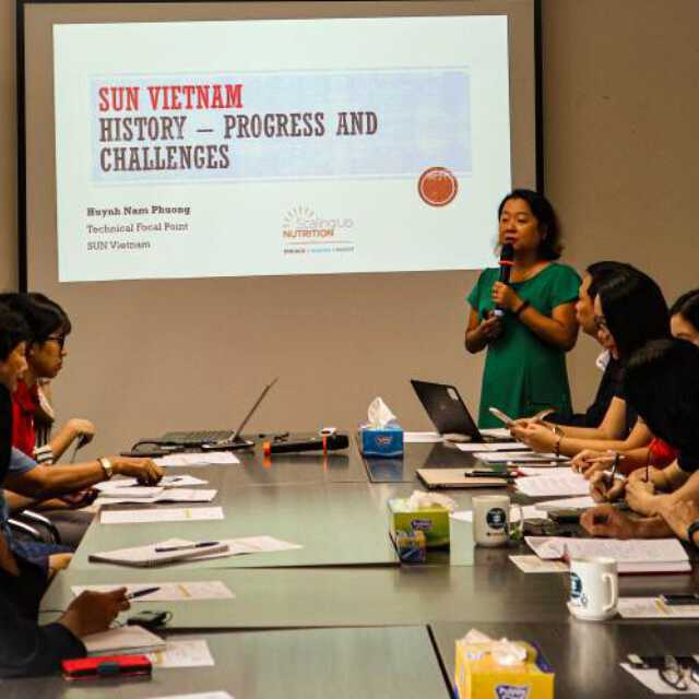 <p>Scaling Up Nutrition (SUN) Initiative to promote maternal and child health and nutrition (MCHN) practices for female workers in Hai Phong, Vietnam.</p>