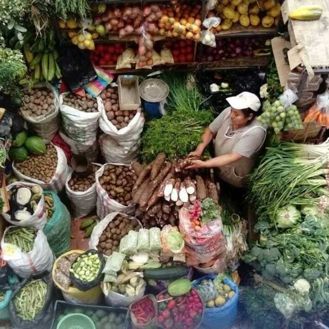 <p>Evaluating and bringing to scale alternative food networks to address non-communicable disease in Ecuador</p>